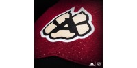 Chandail Officiel LNH ADIDAS ADIZERO: Coyotes d'Arizona (Local)